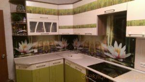Кухонный фартук из стекла с фотопечатью с кувшинками