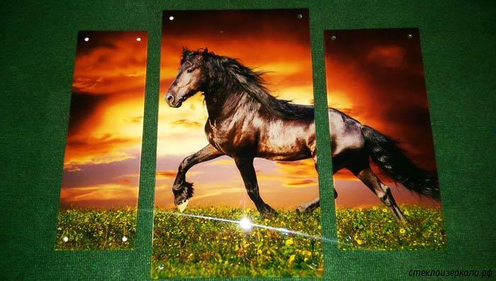 Каталог фото модульных картин из стекла