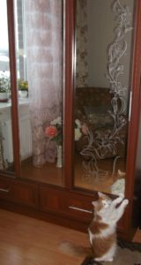 Рисунок на зеркале для шкафа с цветами