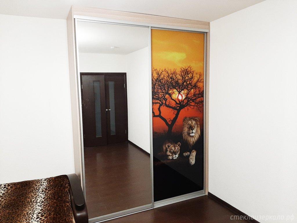 Двери шкафа купе с фотопечатью и зеркалом